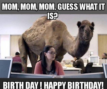 Funny Happy Birthday Meme For Wife : Funny happy birthday images bday joke photos funny happy birthday