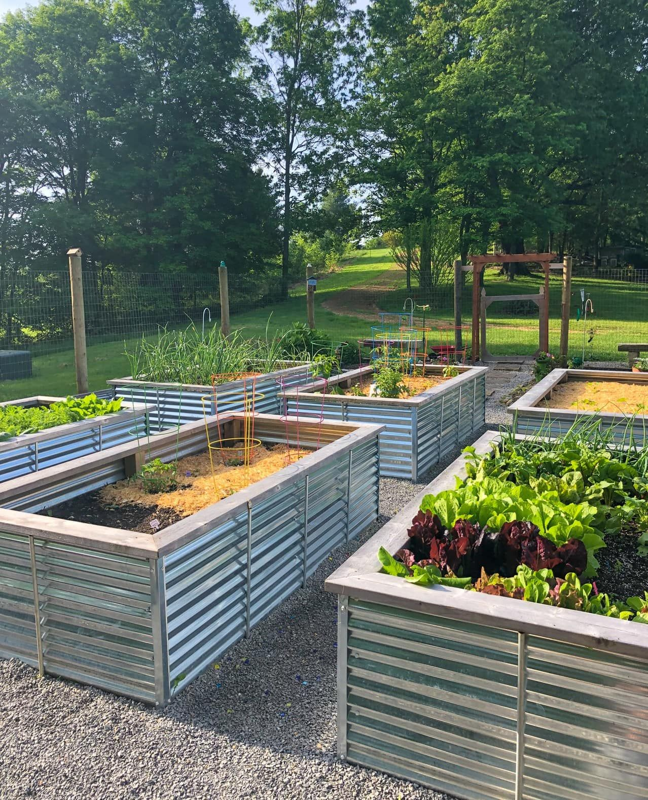Galvanized Steel Raised Garden Bed Plans and Tutorial | Wholefully