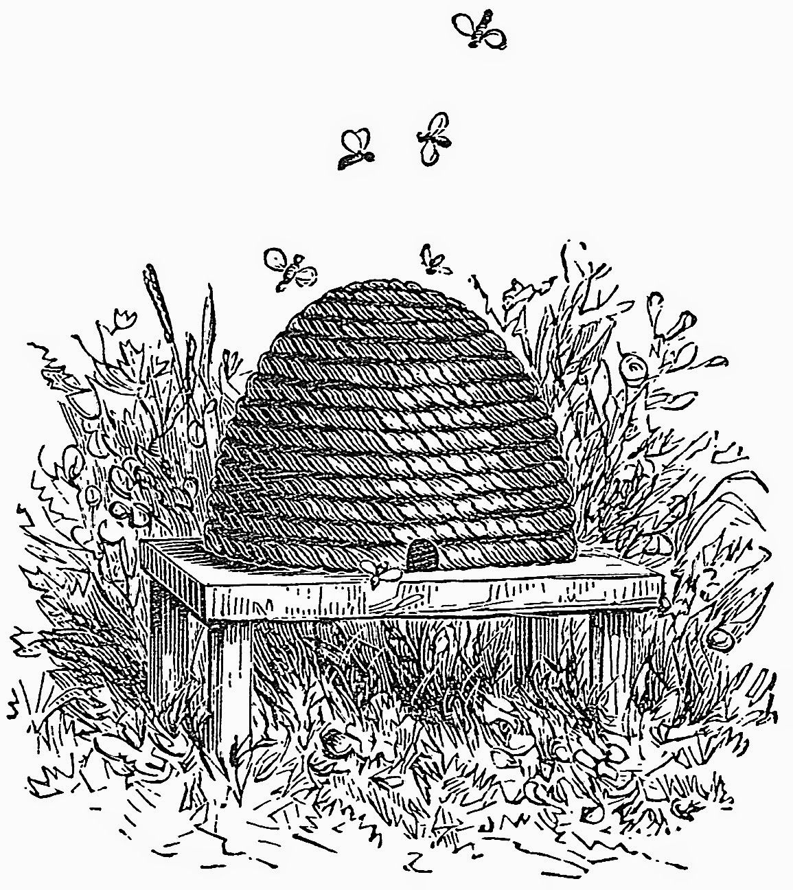 The Skep The Symbol Of The Artisan