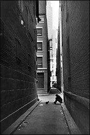 © Cartier Bresson