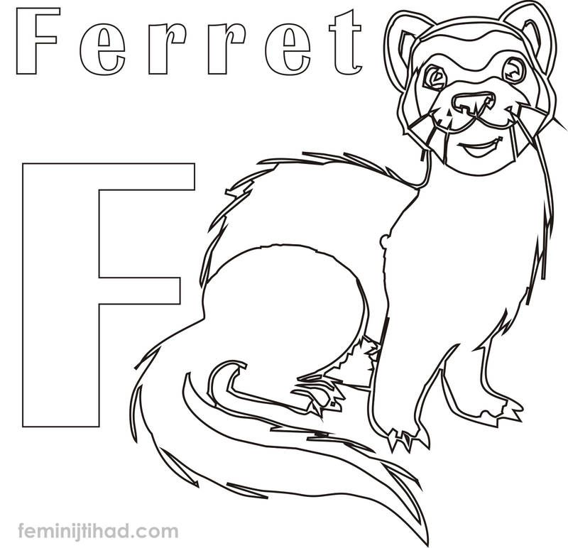 Ferret Coloring Pages To Print Pdf Free Coloring Sheets Ferret Colors Animal Coloring Pages Coloring Pages
