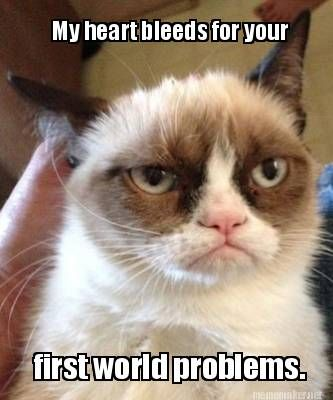 Meme Maker - My heart bleeds for your first world problems. Meme ...
