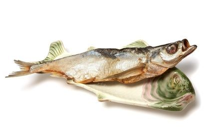 4cf89a1875409f9e40f5f317c03dcecb - How To Get The Fish Smell Out Of The House