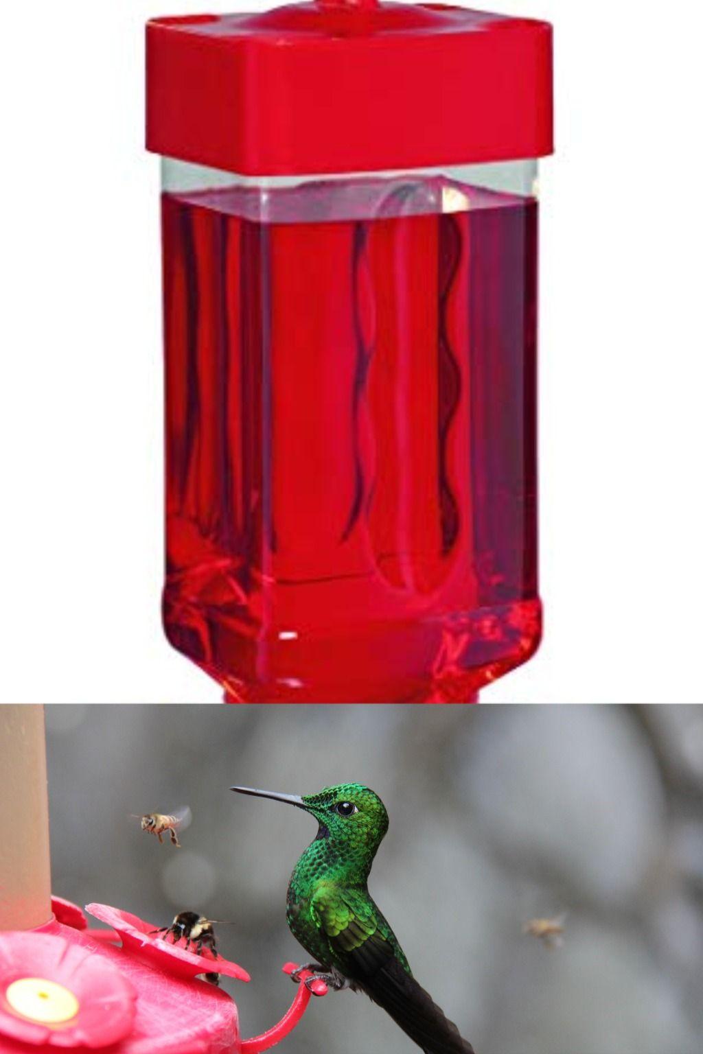 The Best Hummingbird Feeder Top 5 Reviews And Buying Guide In 2020 Humming Bird Feeders Bird Photography Bird Species