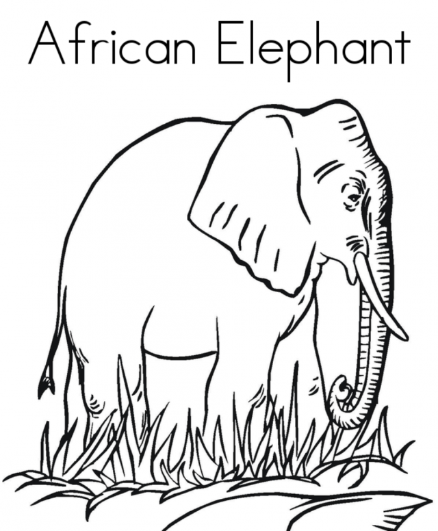 Free Printable Africa Animal Giraffe Pair Coloring Pages For Kids Elephant Coloring Page Animal Coloring Pages Coloring Pages For Kids