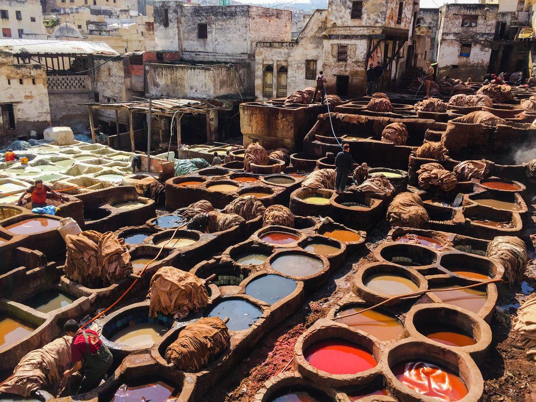 Tannerie de Fès, Maroc