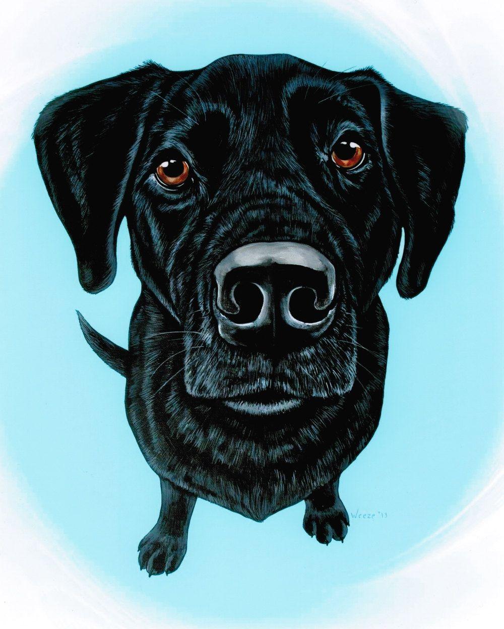 Black Lab Black Labrador Retriever Black Labrador от ArtbyWeeze