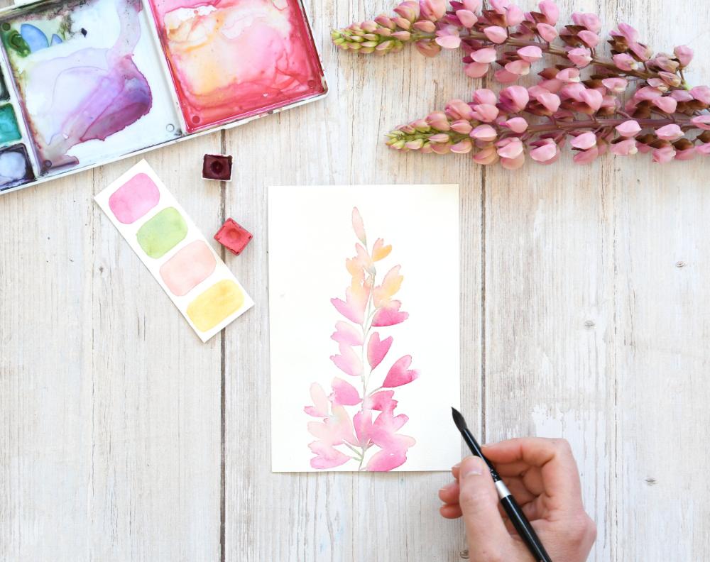 Peindre un lupin à l'aquarelle — aquarelle, fleur, aquarelle facile, aquarelle débutant, aquarelle fleur, lupin, fleur rose, tutoriel aquarelle, peinture, rose - Mirglis - Sarah Van Der Linden