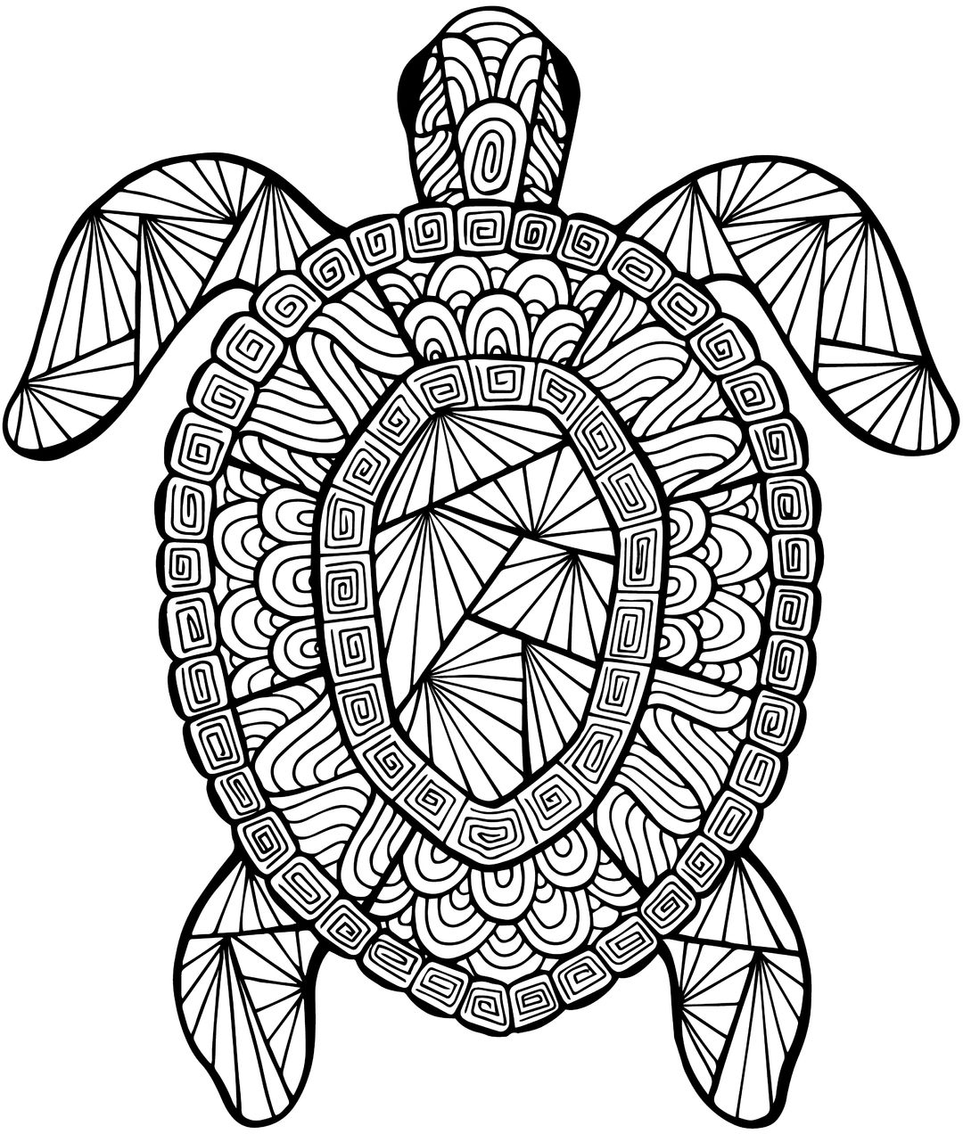 Detailed Sea Turtle Advanced Coloring Page A to Z