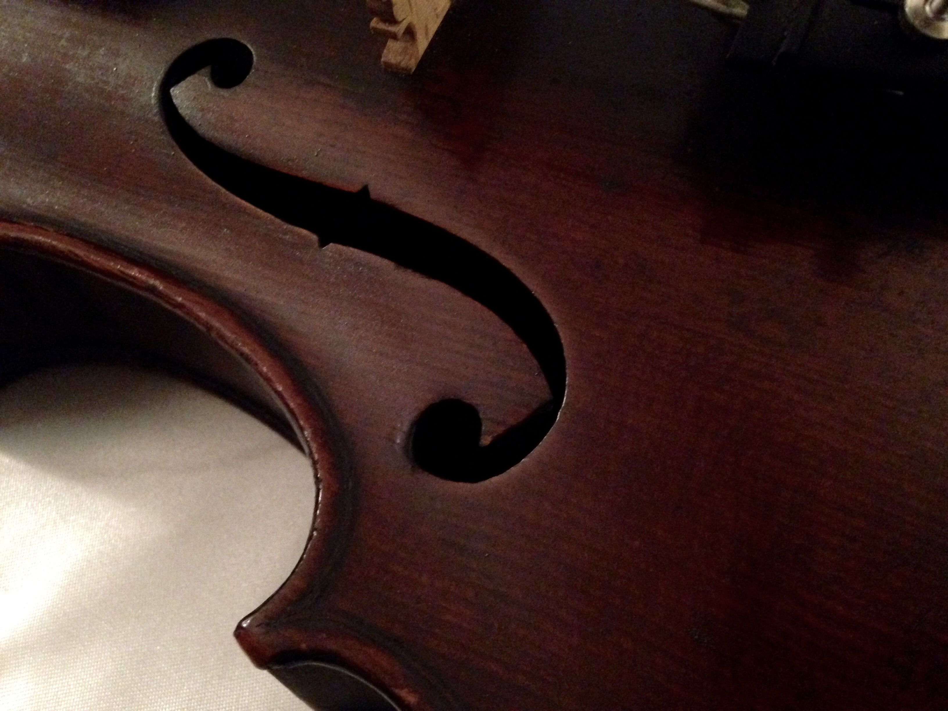 More than music Violin, Music instruments, Neutral colors
