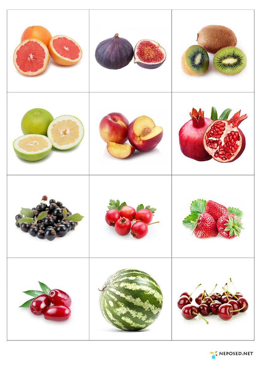 Картинки фруктов и ягод для занятий