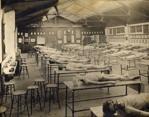 ca. 1900, [Sky-lit anatomy lab at Rush Medical College] via the ...