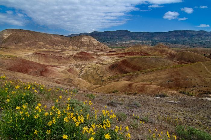 Painted Hills Photograph for Sale as Fine Art. - A horizontal photo of the Painted Hills in the John Day Fossil Beds National Monument, Oregon