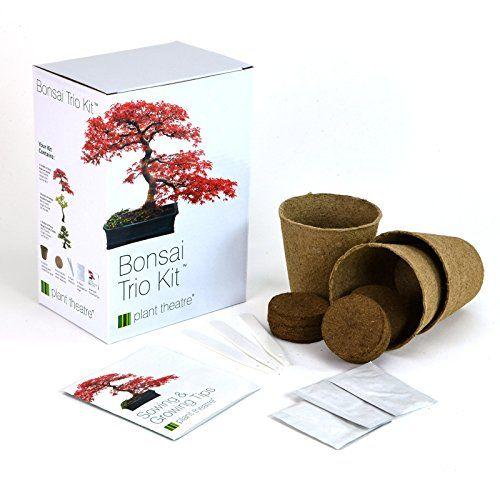 Gardening Plant Theatre Bonsai Trio Kit 3 Distinctive Bonsai Trees To Grow Great Gift Bonsai Kit Bonsai Tree Bonsai