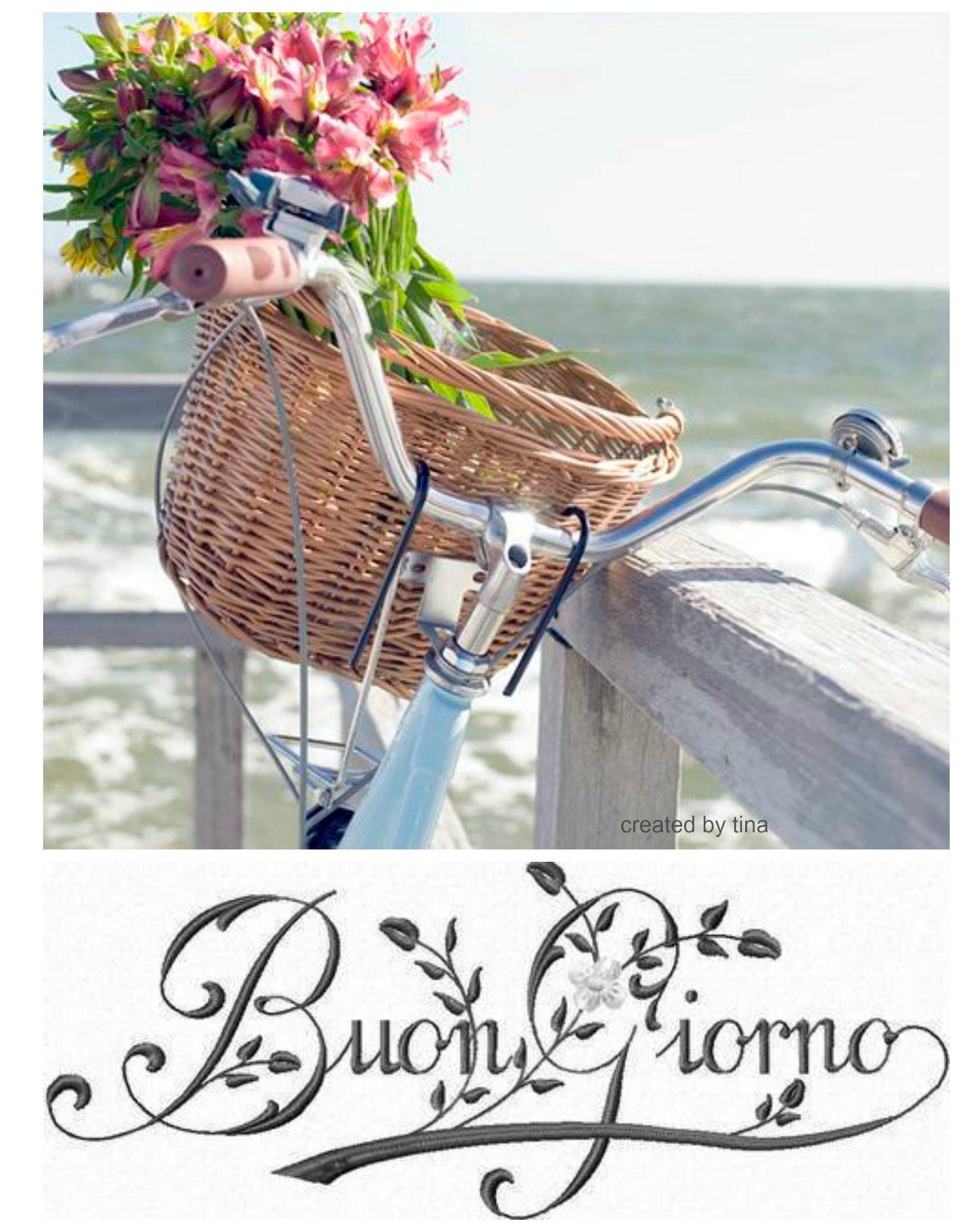 Buongiorno In Bicicletta Immagini