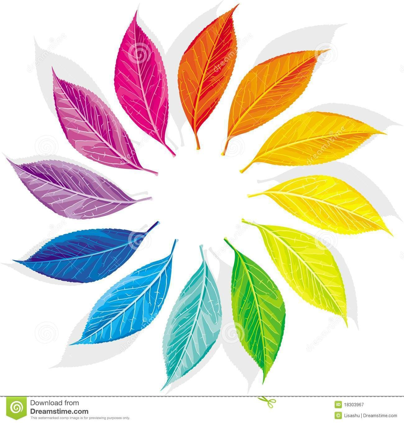 Color Wheel Creative Designs