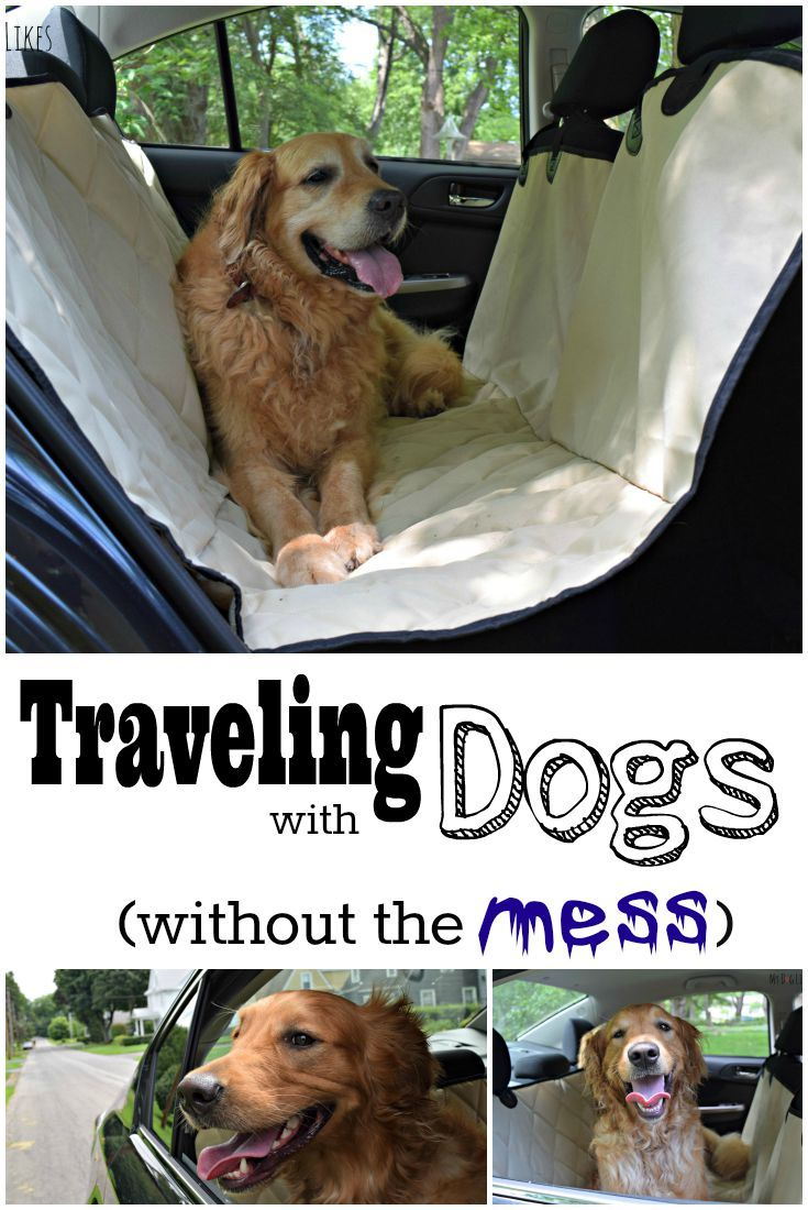 4Knines Seat Cover Review - Protect Your Investment | Dogs ...