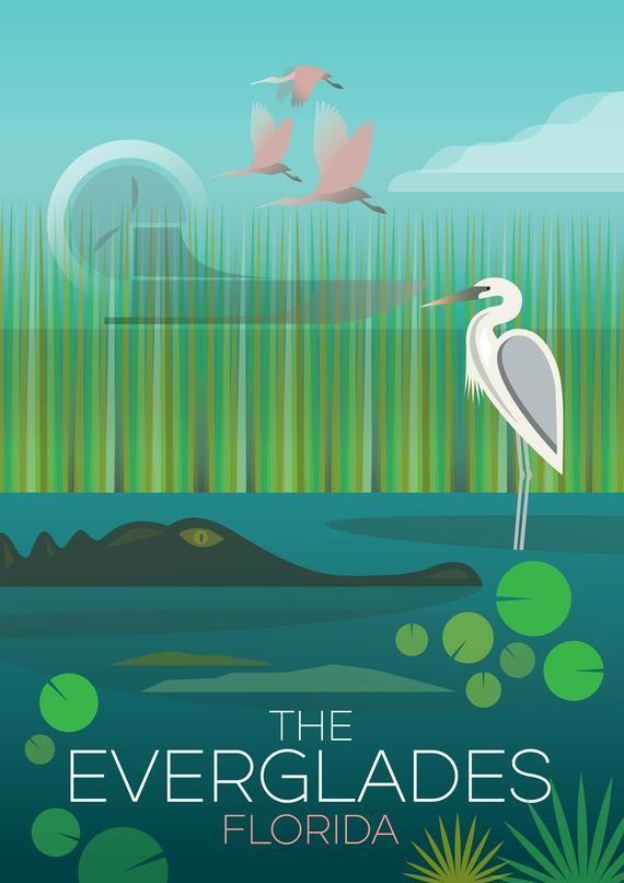 Everglades National Park Print | Etsy