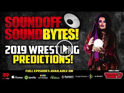 2019 Predictions For Wwe And The Wrestling World Wwewwe