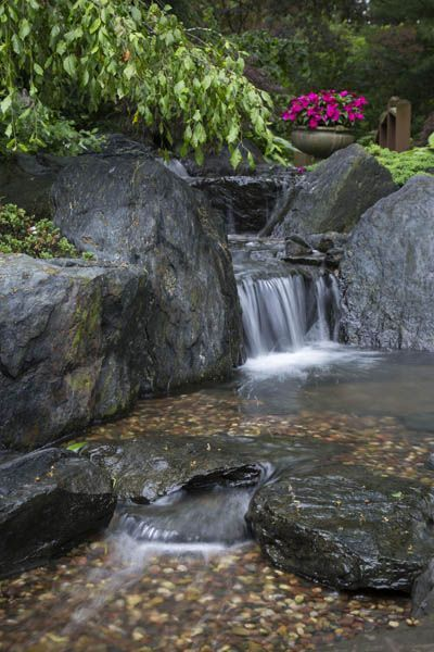 Cool and Shaded Aquascape Pondless Waterfall #waterfall # ...