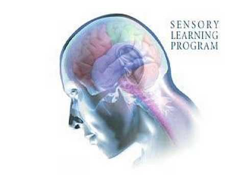 Sensory Learning