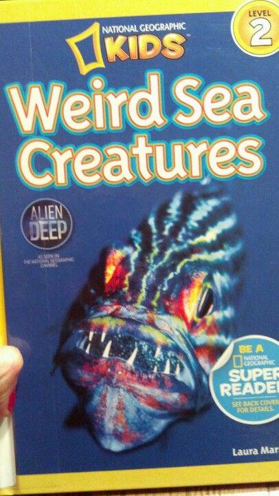 Book-Weird Sea Creatures by laura marsh