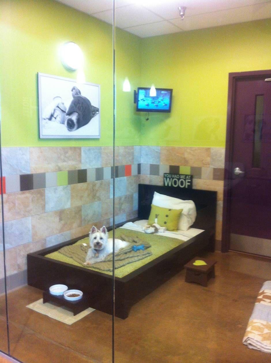 Dallas' Luxury Dog Hotel Nicer