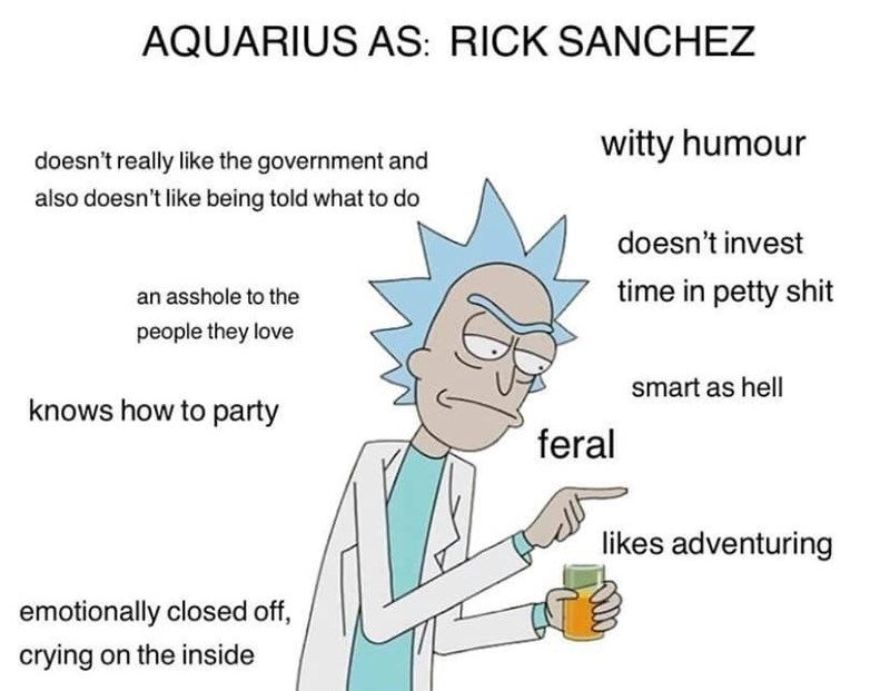 Photo of The Zodiac Signs As Rick & Morty Characters, Because Why Not