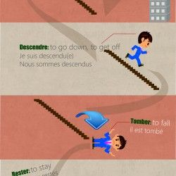 How to use the correct verb with the French past tense. An image about the verb être and the verbs of movement, the story life of a guy to remember e
