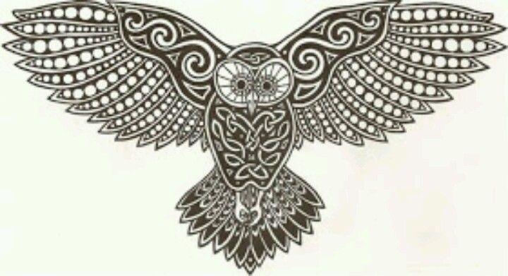 The Owl Is Symbolic Of Esoteric Wisdom And Secrecy In Folklore The