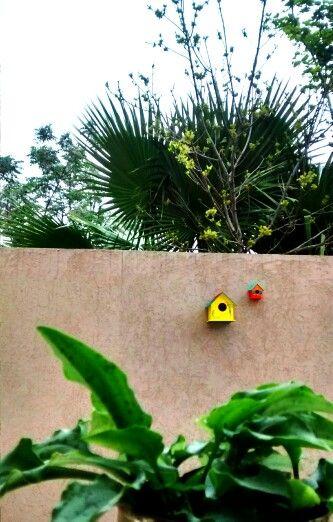 Mis casitas de pájaros <3