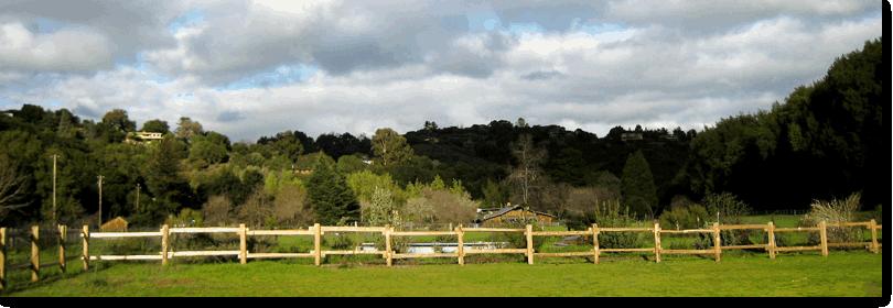 Hidden Villa:  organic farm, community programs for students, environment, etc.  Los Altos Hills, CA