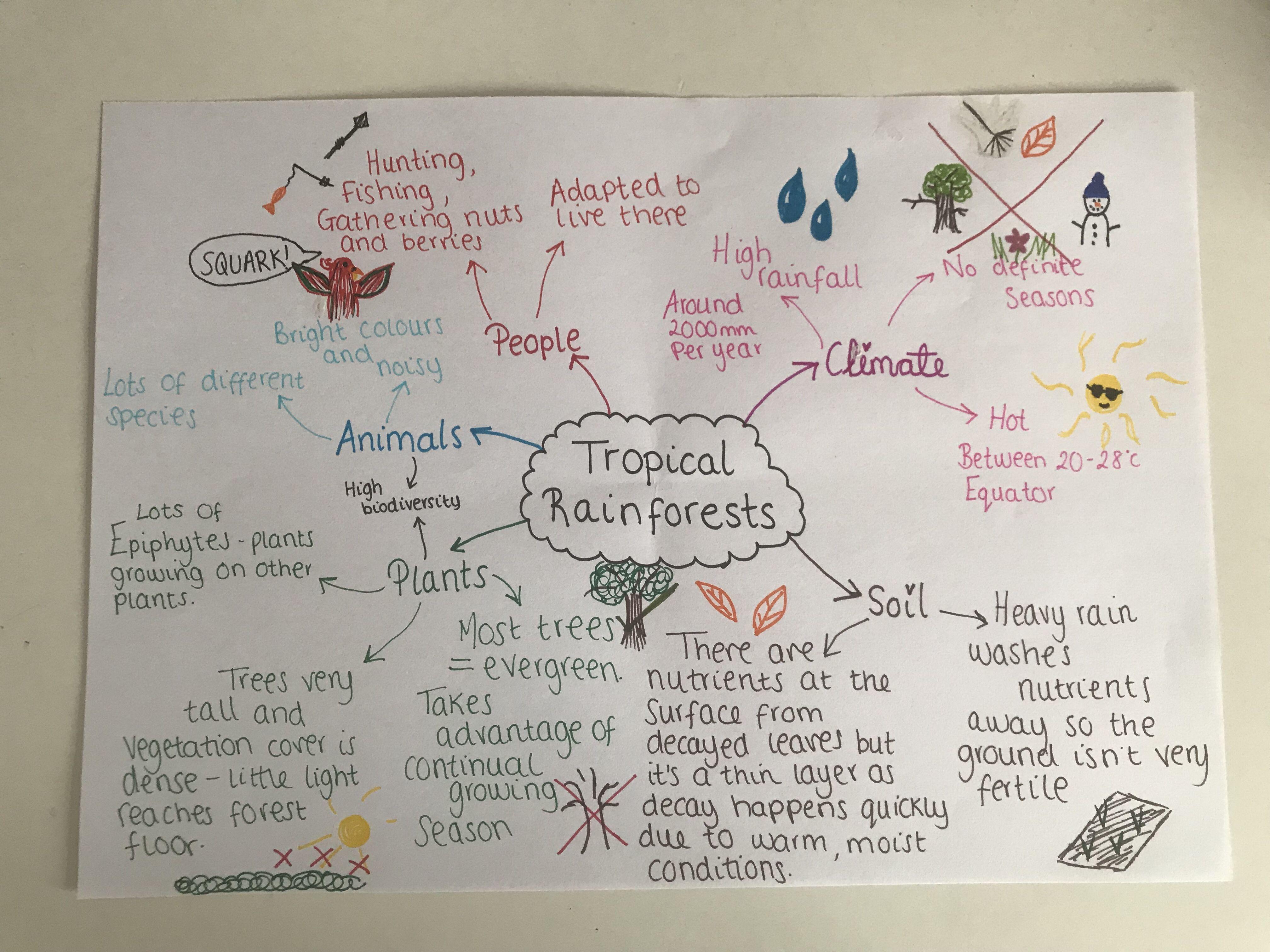 AQA GCSE Geography Revision The Living World 🌍 Gcse