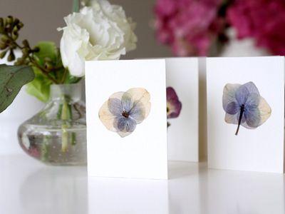 DIY Pressed Flower Cards