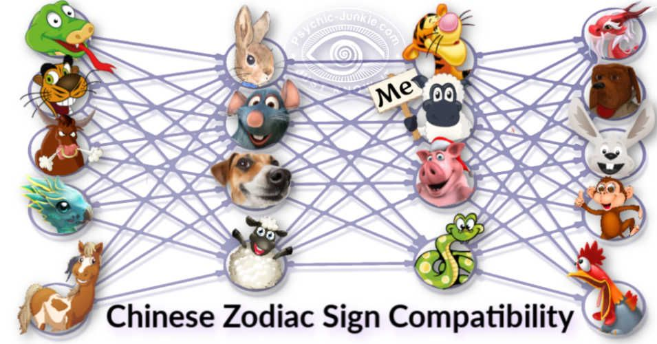 Is Your Chinese Zodiac Sign Compatibility Right For Love