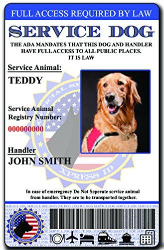9c5b78556c44 Avoid Awkward Security Questions With A Holographic Service Dog ID Card  written by: D E Bradley Support dogs are vital companions for all disabled  or ...