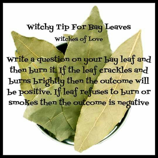 cpd bay leaf question spell   Witchcraft   Pinterest ...