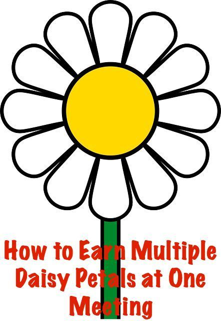 Here are some great ways to earn more than one Daisy petal  during a meeting.