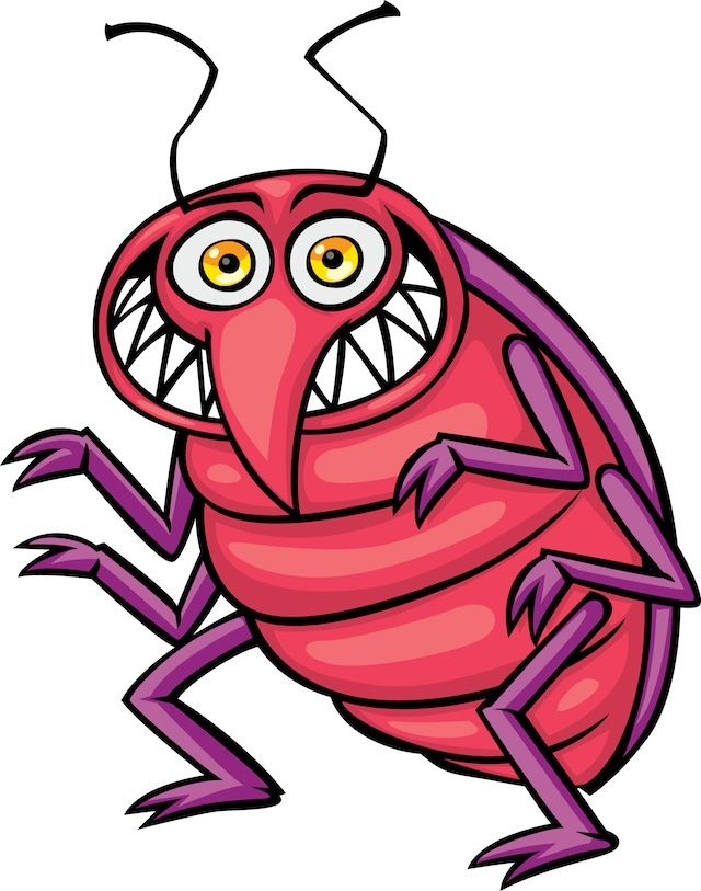 funny insect clip art | dromgif.top | thegioidongvat ...