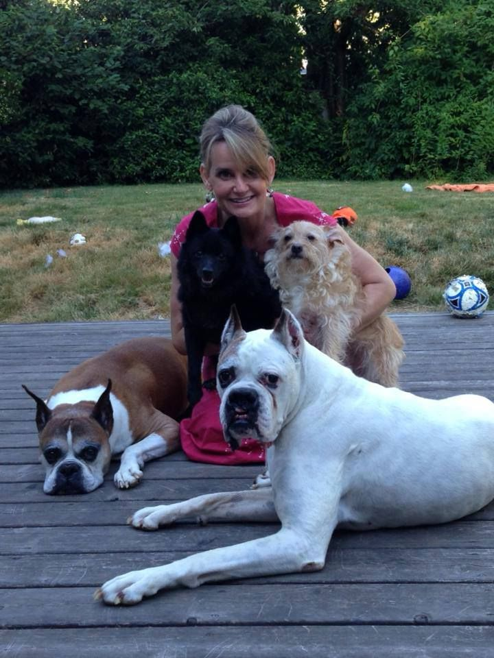 Sharon Godwin Decided Two Little Dogs Weren T Enough For Her House So She Added Two More She Couldn T Imagine Giving Boxer Dogs Boxer Rescue Adoption Stories