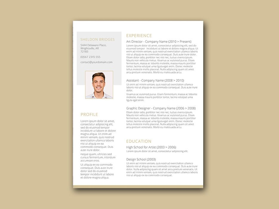 Free Simple Resume Template with Classy Style Design Free Resume