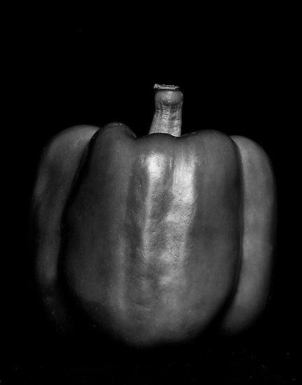 Black And White Still Life Photography Famous