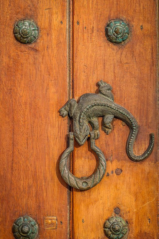 Lizard Door Knocker