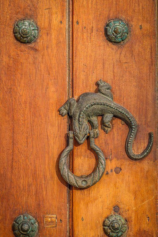 Lizard Door Knocker | Cartagena, Pools and The streets
