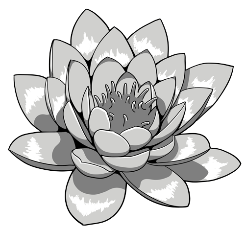 Lotus flower tattoos high quality photos and flash designs of lotus flower tattoos high quality photos and flash designs of mightylinksfo Gallery