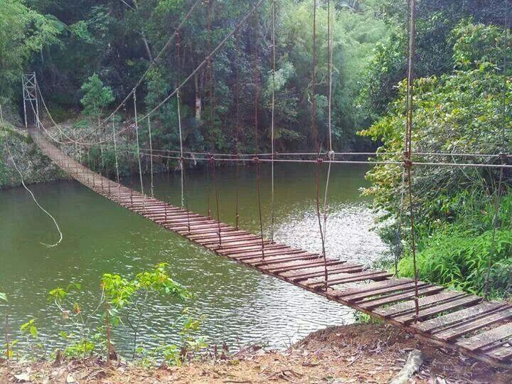 Puente colgante, Lago Garzas, Adjuntas, Puerto Rico