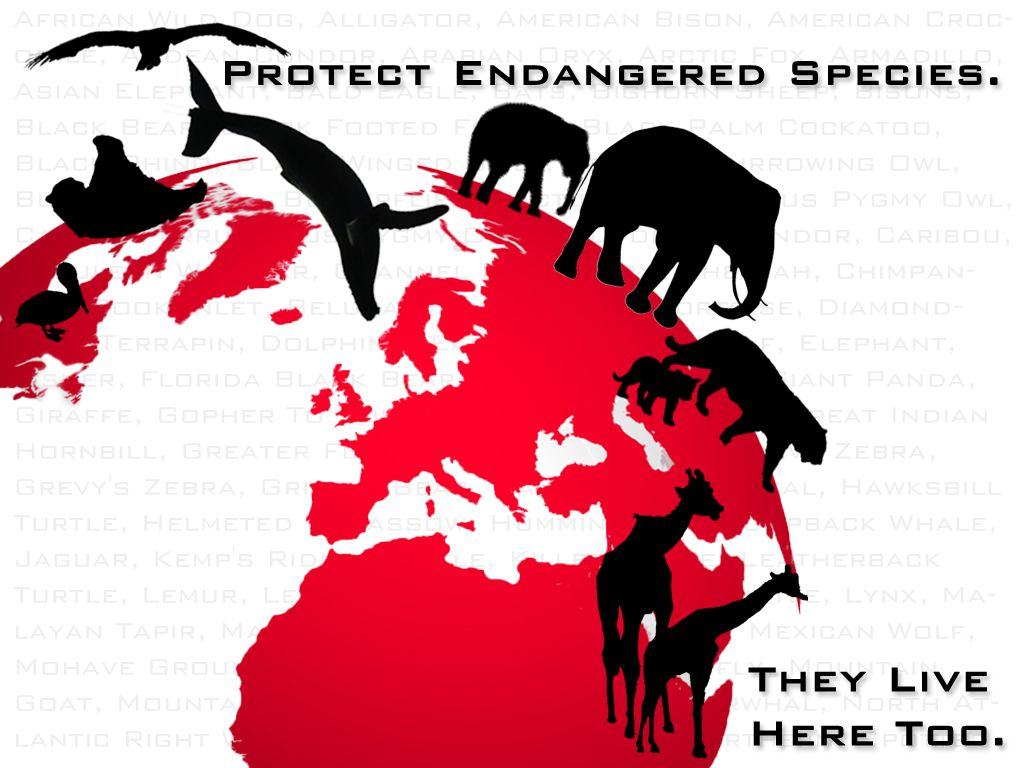 Protecting Endangered Species