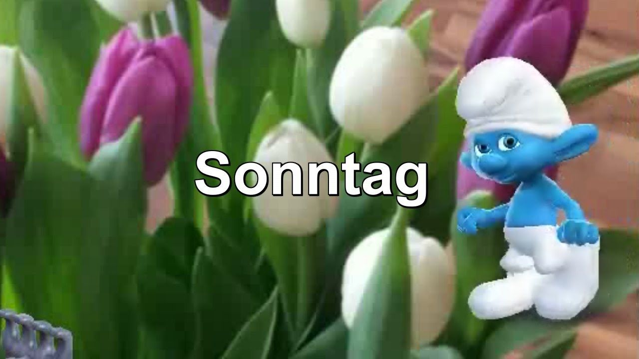 Schönen Sonntag Disch..... Schlumpf von Zoobe deutsch Schlümpfe