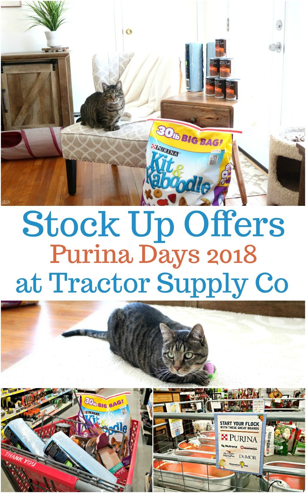 Purina Days Stock Up Help Your Local Animal Shelter Purina Animal Shelter Tractor Supplies