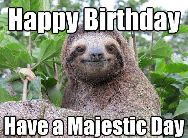 100 Ultimate Funny Happy Birthday Meme S Alles Gute Zum